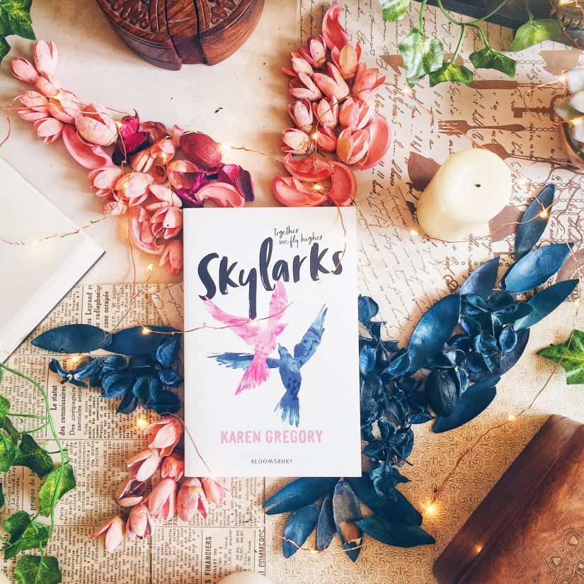 Blog Tour Book Review: Skylarks by Karen Gregory